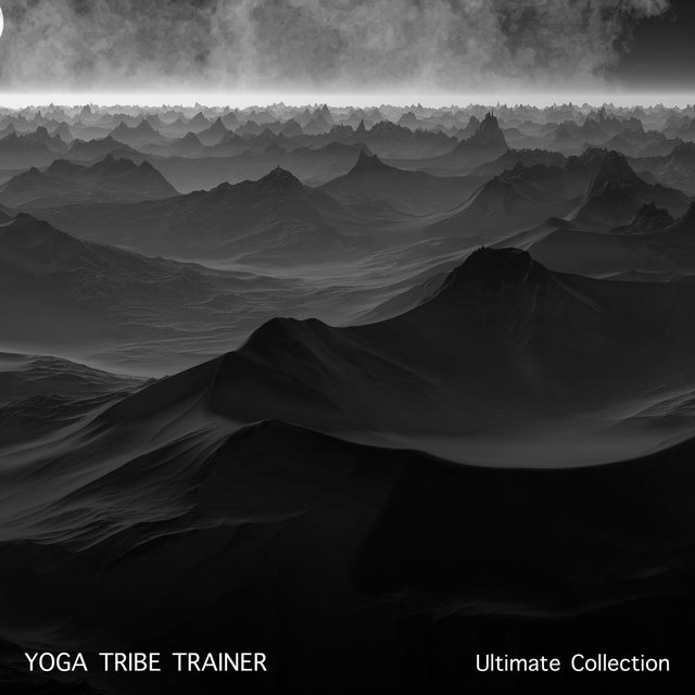 14 Ultimate Workout Collection: Yoga Tribe Trainer
