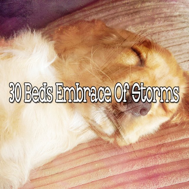 30 Beds Embrace of Storms