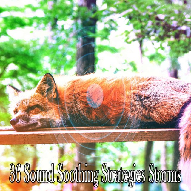 36 Sound Soothing Strategies Storms