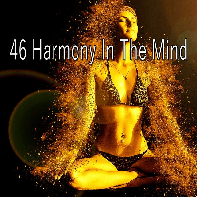 46 Harmony in the Mind