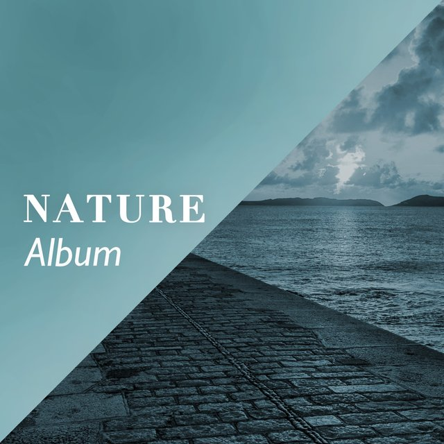 Flowing Sleepy Nature Album