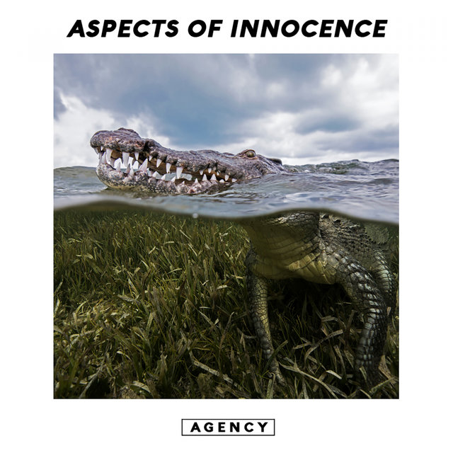 Aspects of Innocence