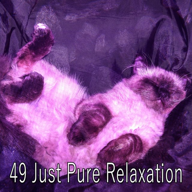 49 Just Pure Relaxation