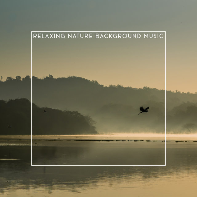 Relaxing Nature Background Music: Tranquil Sounds to Help You Sleep, Relax and Unwind