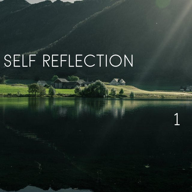Self Reflection, Vol. 1