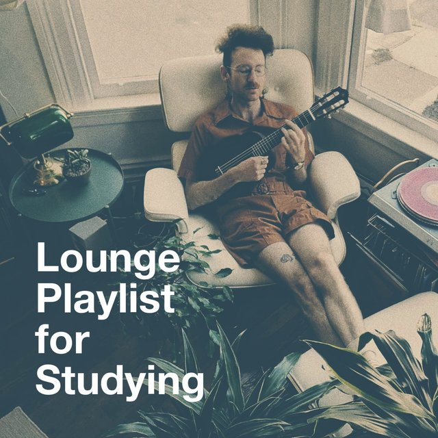 Lounge Playlist for Studying