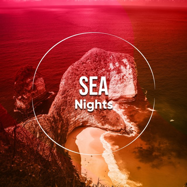 # 1 Album: Sea Nights
