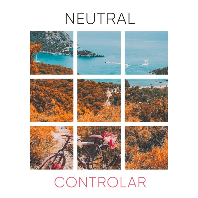 # Neutral Controlar