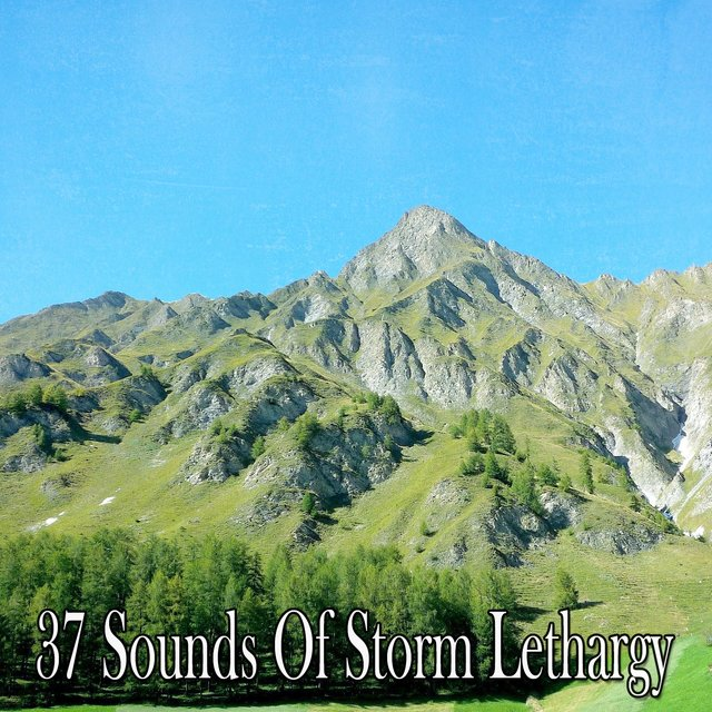 37 Sounds of Storm Lethargy