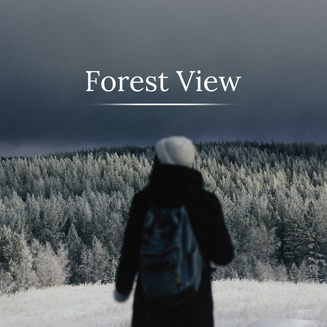 Forest View - 15 New Age Melodies Straight from Mother Nature, Woodland Escape, Animals, Clear Your Mind, Oasis of Relaxation, Birdsong, Blue Skies