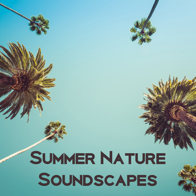 Summer Nature Soundscapes - Therapy Music with Nature Sounds, Sense of Calm, Nature Relaxation