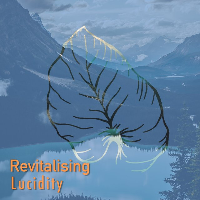 # 1 Album: Revitalising Lucidity
