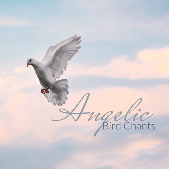 Angelic Bird Chants – Nature Sounds, Relaxation, Birds Singing