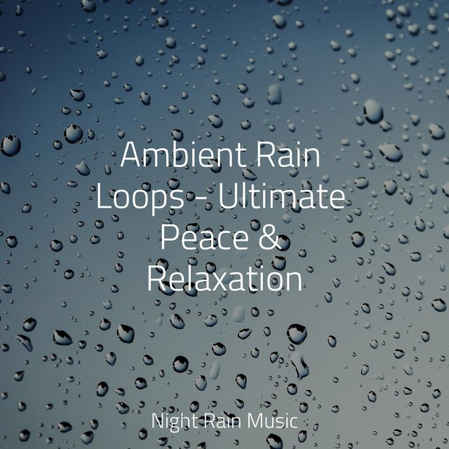 Ambient Rain Loops - Ultimate Peace & Relaxation