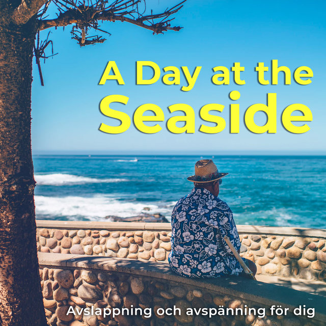 A Day at the Seaside