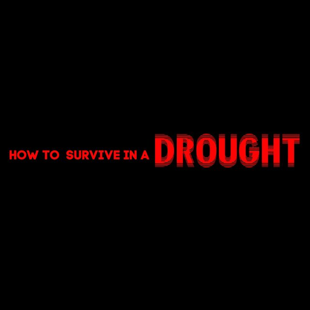 How to Survive in a Drought