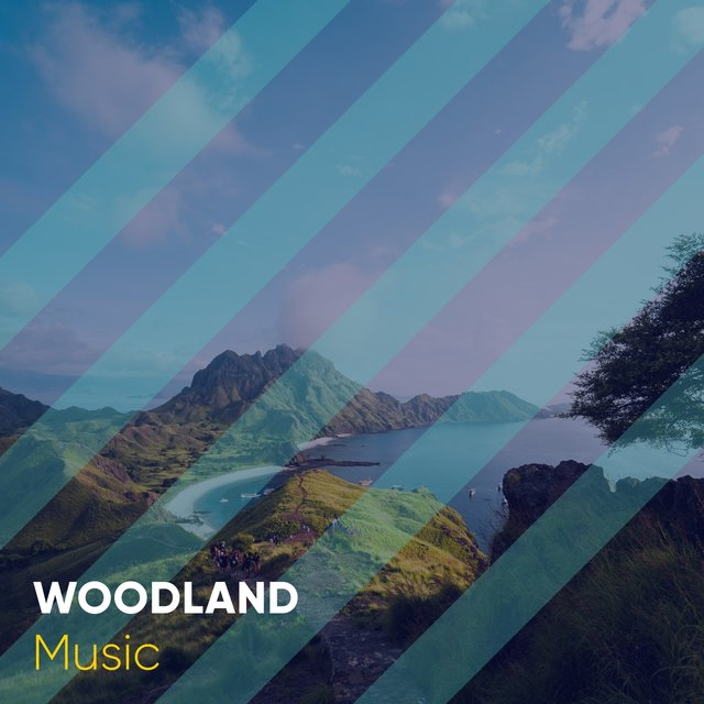 Calm Garden Woodland Music