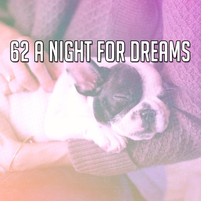 62 A Night for Dreams