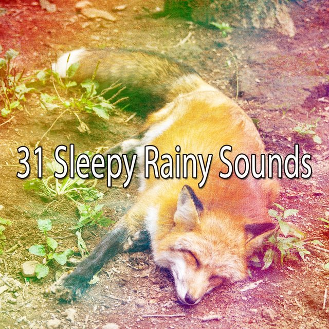 31 Sleepy Rainy Sounds
