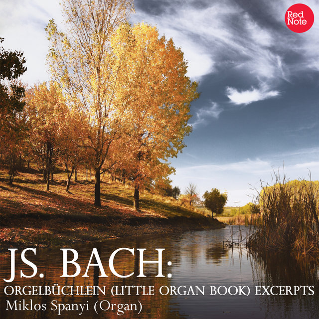 Bach: Orgelbüchlein (Little Organ Book) Excerpts