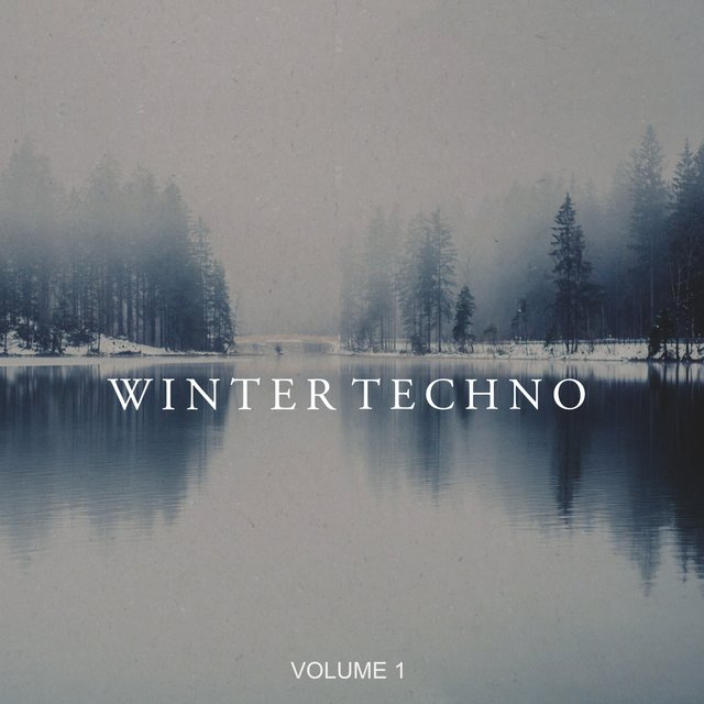 Winter Techno, Vol. 1 (25 Unique Techno Pearls)