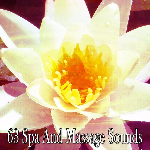 63 Spa and Massage Sounds