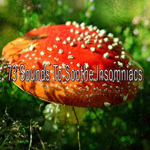 73 Sounds to Soothe Insomniacs