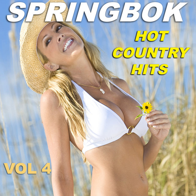 Springbok Hot Country Hits - Vol 4
