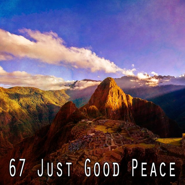 67 Just Good Peace