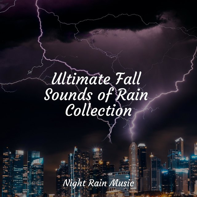 Ultimate Fall Sounds of Rain Collection