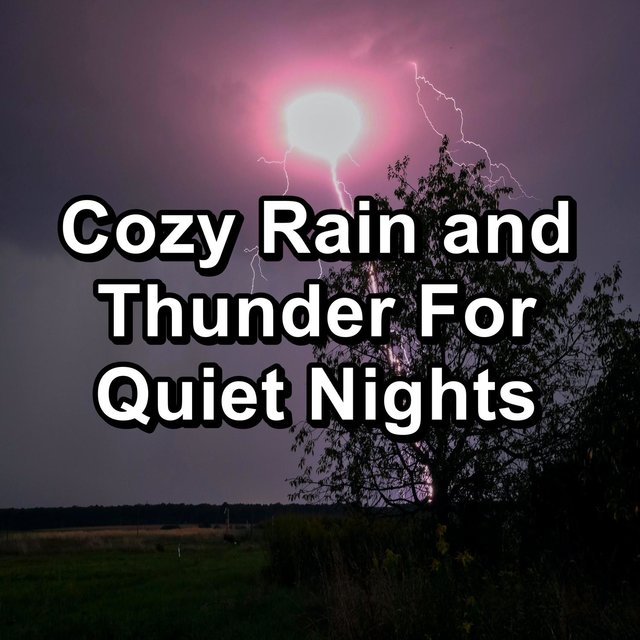 Cozy Rain and Thunder For Quiet Nights