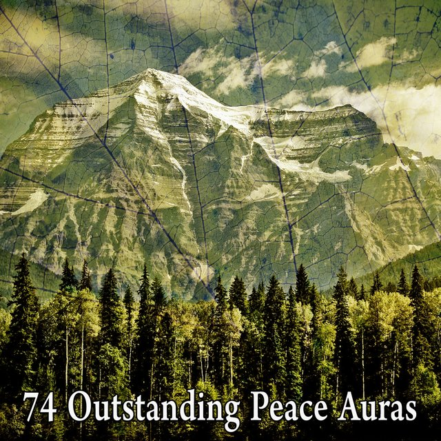 74 Outstanding Peace Auras