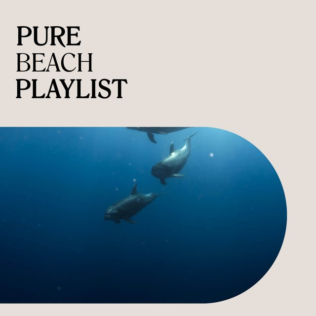 Pure Beach Playlist