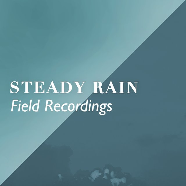 2020 Soft Steady Rain & Thunder Field Recordings