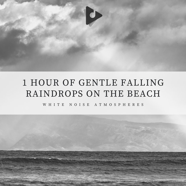 1 Hour of Gentle Falling Raindrops on the Beach