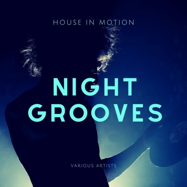 Night Groovers (House in Motion)