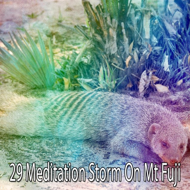 29 Meditation Storm on Mt Fuji