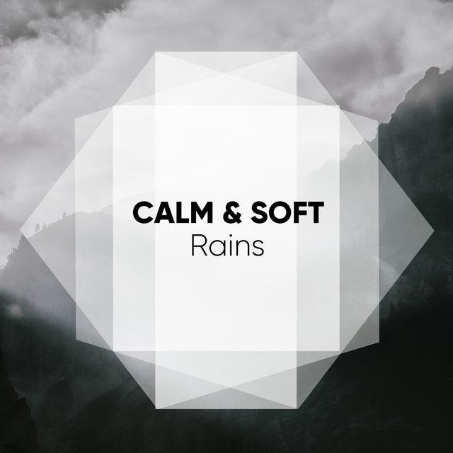 # 1 Album: Calm & Soft Rains
