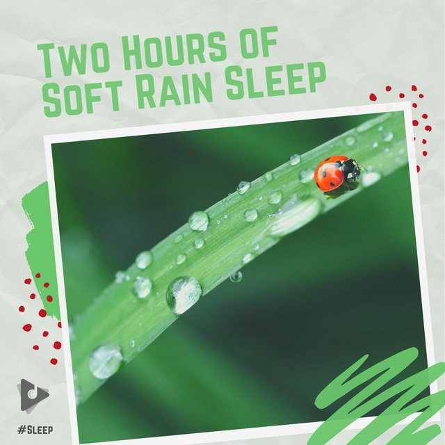 Two Hours of Soft Rain Sleep