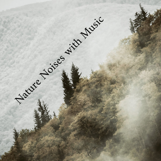 Nature Noises with Music: 15 Tracks Perfectly Suited to Relax, Rest, Unwind and Calm Down
