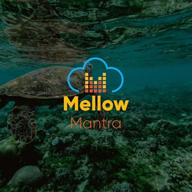 # 1 Album: Mellow Mantra