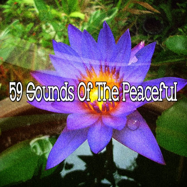 59 Sounds of the Peaceful