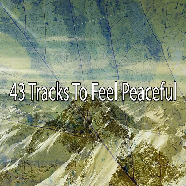 43 Tracks to Feel Peaceful
