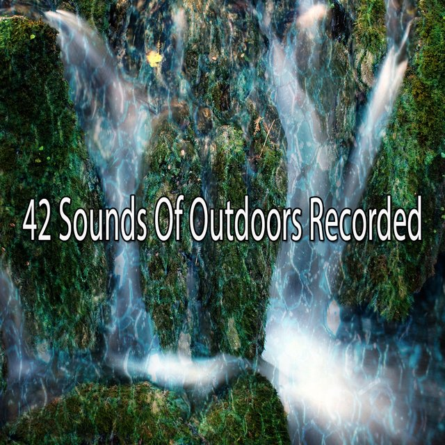 42 Sounds of Outdoors Recorded