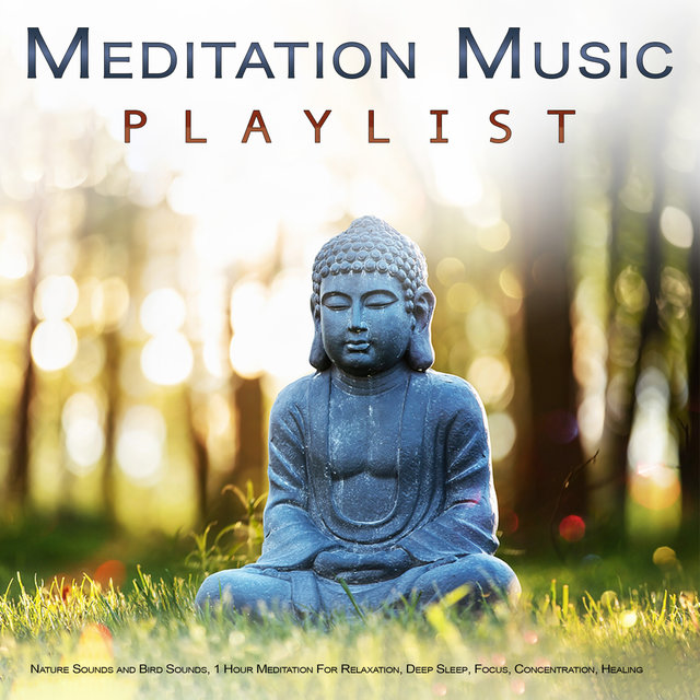 Meditation Music Playlist: Nature Sounds and Bird Sounds, 1 Hour Meditation For Relaxation, Deep Sleep, Focus, Concentration, Healing, Wellness, Mindfulness and Sleeping Music