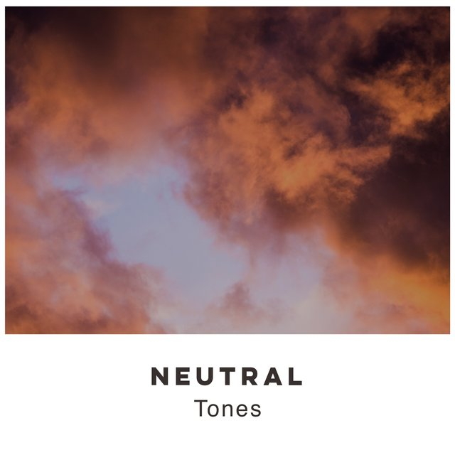 # 1 Album: Neutral Tones