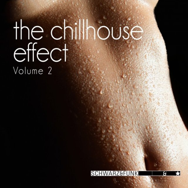 The Chillhouse Effect, Vol. 2