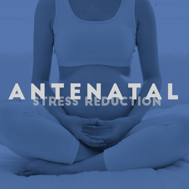 Antenatal Stress Reduction: The Best Relaxing Music for Pregnant Women to Relax, Chill Out and Calm Down