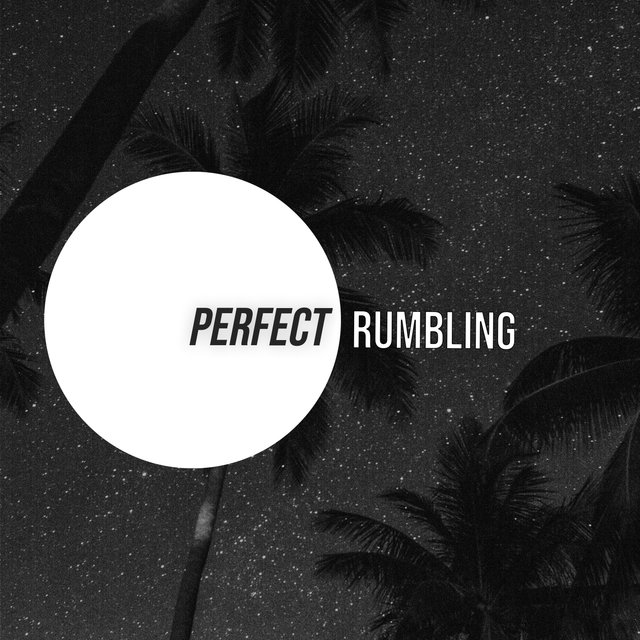 # 1 Album: Perfect Rumbling