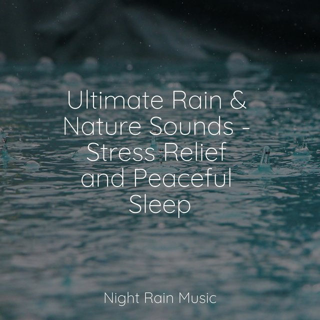 Ultimate Rain & Nature Sounds - Stress Relief and Peaceful Sleep